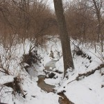 TRE_Arboretum, winter_Creek