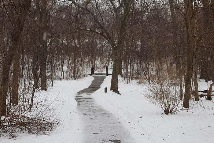 Work keeps arboretum busy even in winter