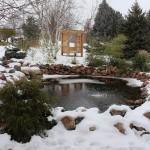 TRE_Arboretum, winter_Pond