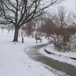 TRE_Arboretum, winter_Winding Path