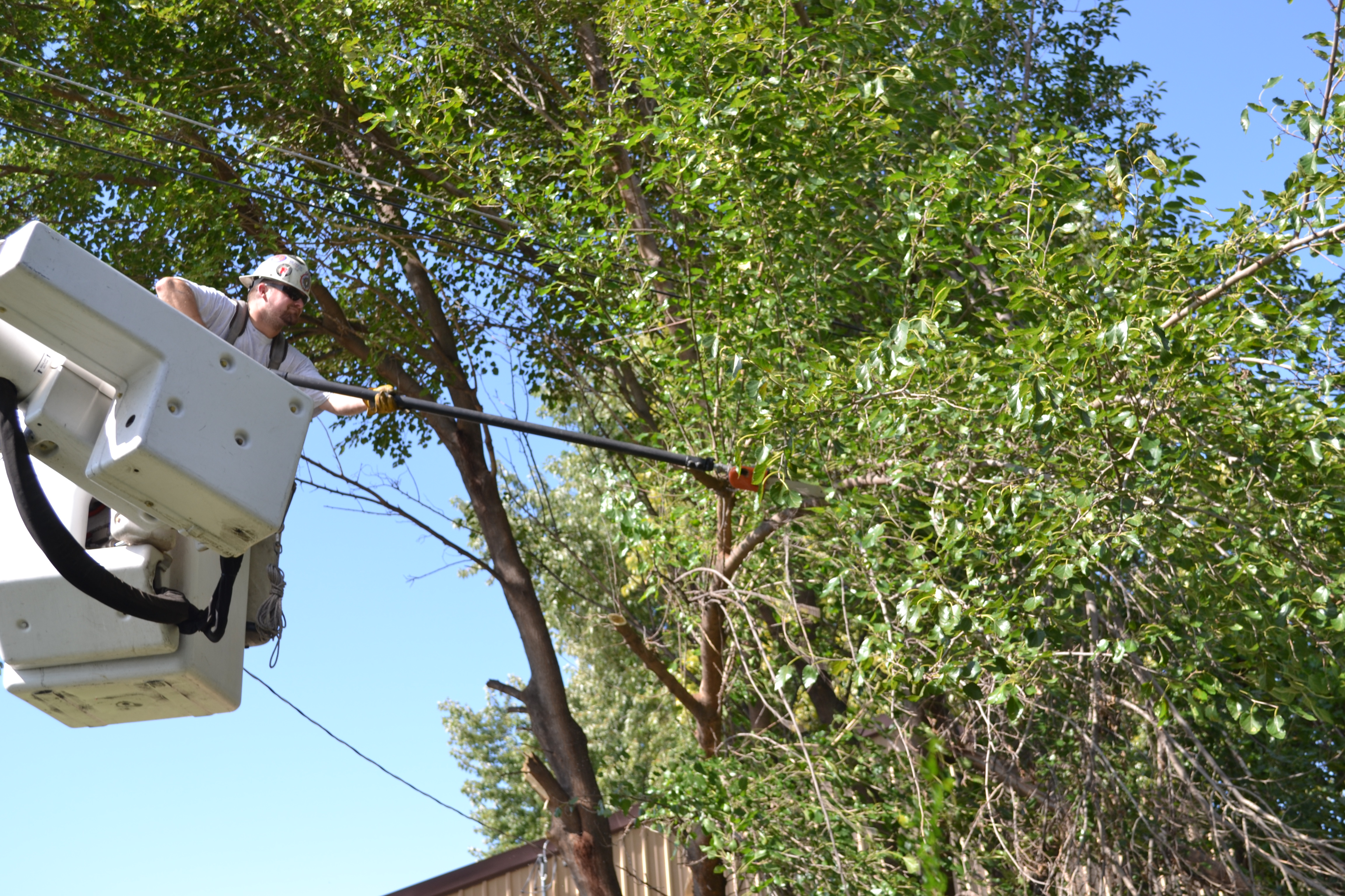Troubleshooter Aaron Prohaska trims trees that had grown into the power lines at a workshop in LaPlatte. OPPD advises customers not to plant trees underneath power lines. For tree planting tips, visit oppd.com/trees.
