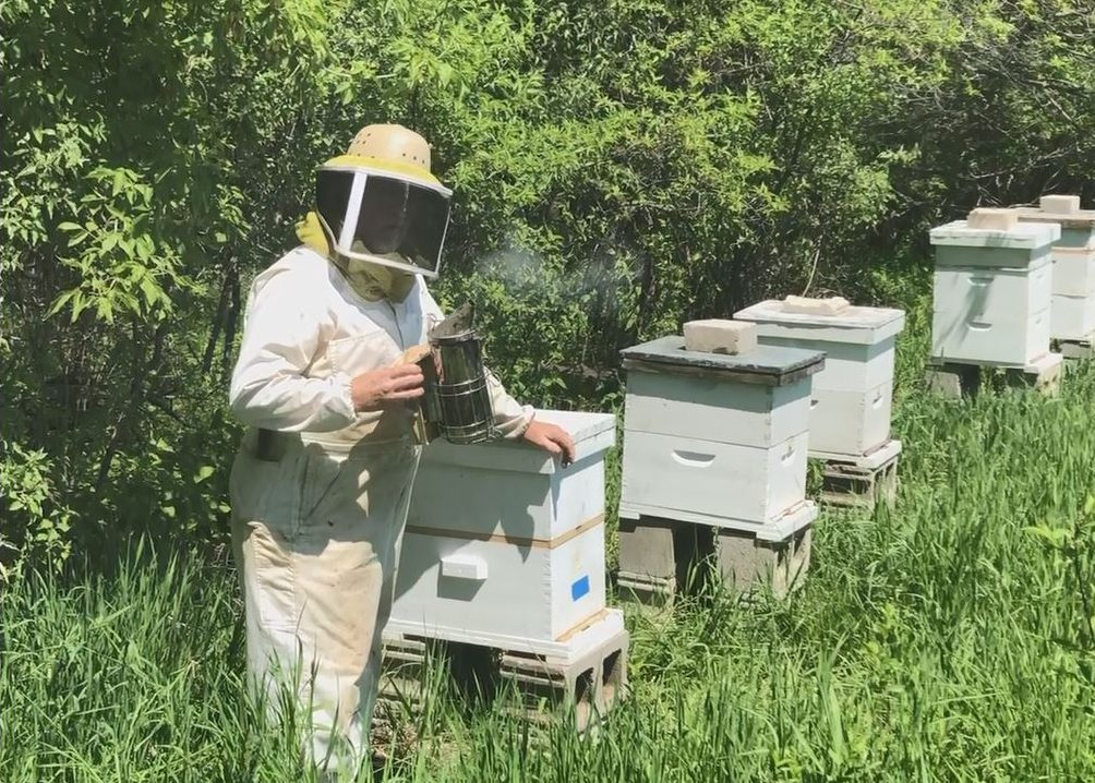 OPPD retiree Jeff Yeager near some of of his bee boxes near Fort Calhoun Neb.