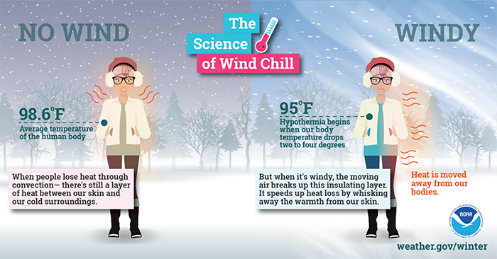 effects of wind chill on the body, protect yourself from wind chills
